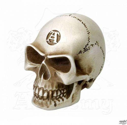 dekorácia (hlavica radiacej páky) ALCHEMY GOTHIC - Alchemist Gear Knob: Bone - V40