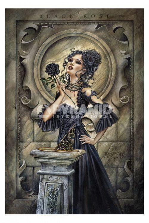 plagát Alchemy (Black Rose) - PP31978 - PYRAMID POSTERS